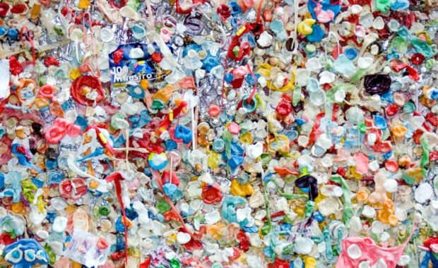 Creative Ways to Repurpose Your Everyday Plastic Water Bottles